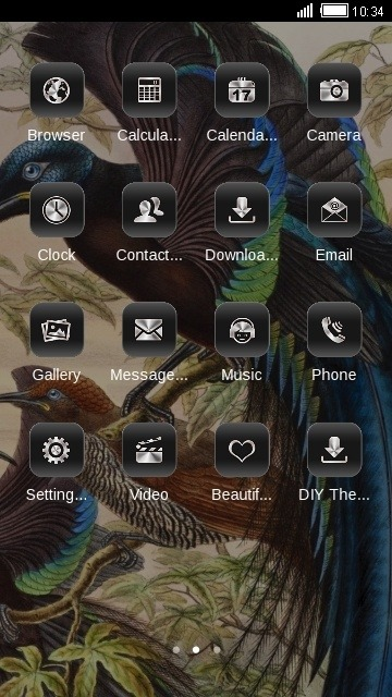 Birds Of Paradise CLauncher Android Theme Image 2