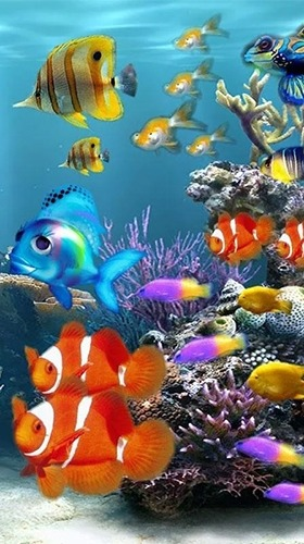 Aquarium Android Wallpaper Image 2