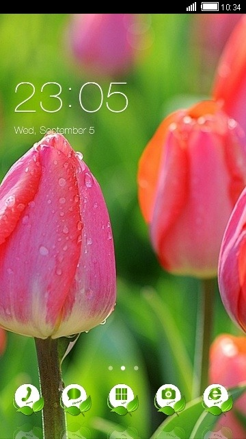 Flowers CLauncher Android Theme Image 1