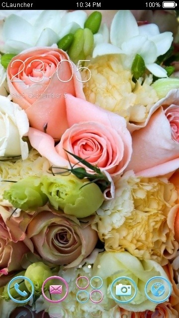 Bouquet CLauncher Android Theme Image 1