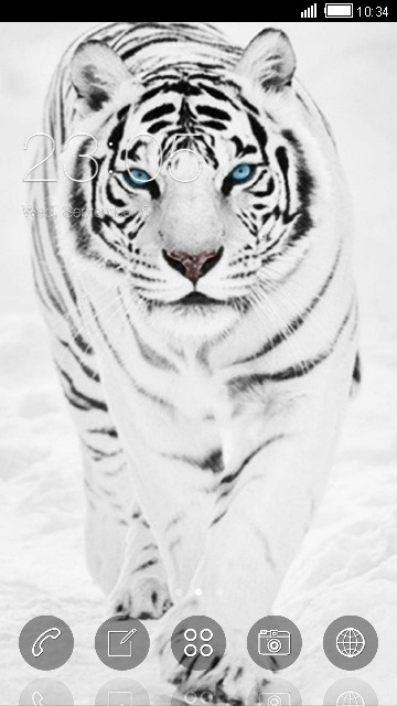 White Tiger CLauncher Android Theme Image 1