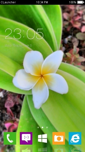 Flower CLauncher Android Theme Image 1