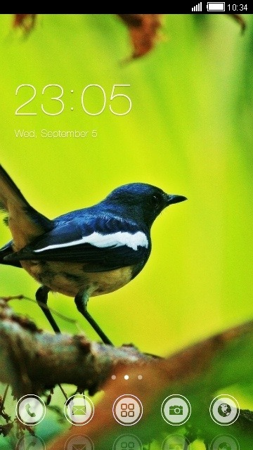 Finch CLauncher Android Theme Image 1