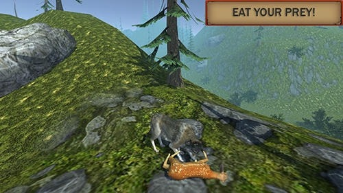 Wolf Simulator Evolution Android Game Image 4