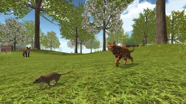 Cat Simulator 2020 Android Game Image 4