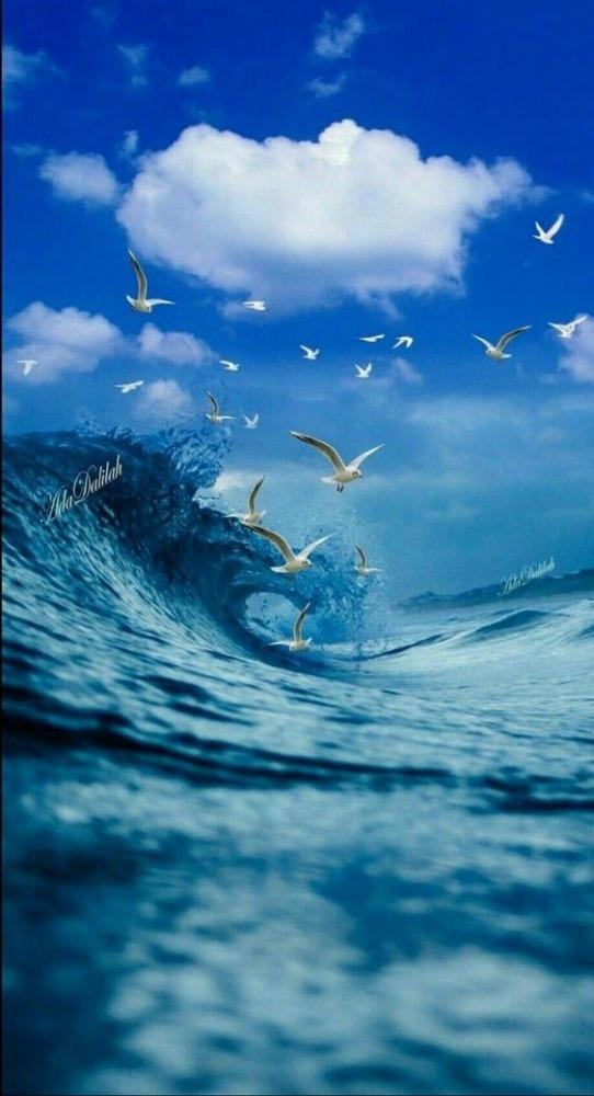 Sea Mobile Phone Wallpaper Image 1