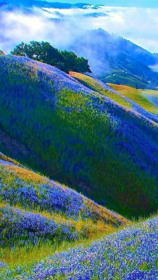 Mountains Android Wallpaper Image 1