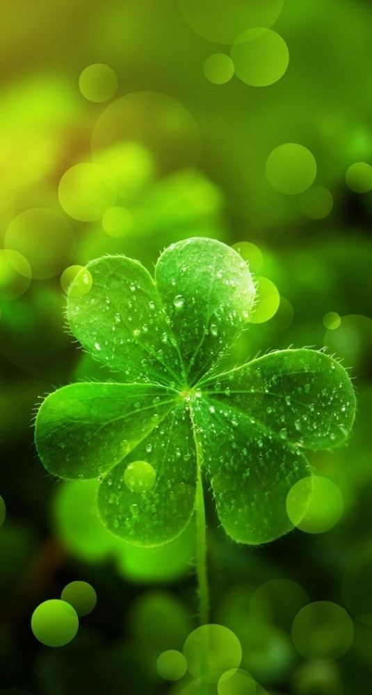 Green Leaf Android Wallpaper Image 1