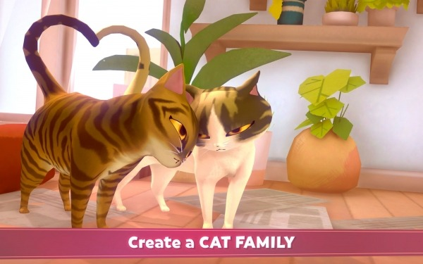 My Cat Club Android Game Image 1
