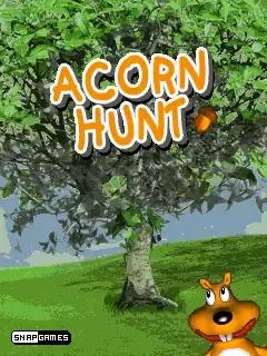 Acorn Hunt Java Game Image 1