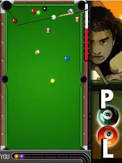 Addicted To Pool Java Game Image 3