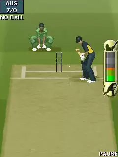 EA Cricket 2011 Java Game Image 3