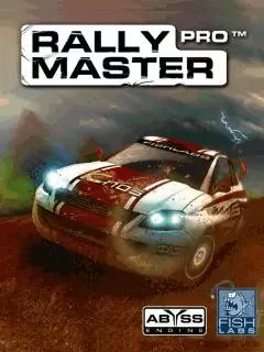 Rally Master Pro Java Game Image 1