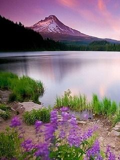 Mountain Lake  Mobile Phone Wallpaper