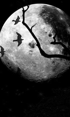 Download Free Mobile Phone Wallpaper Dark Moon 338 Mobilesmspk Net