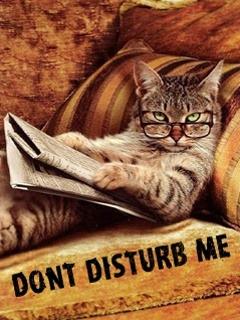 Dont Disturb Me