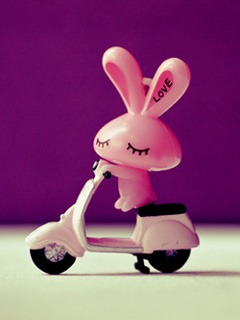 Download Free Mobile Phone Wallpaper Pink Bunny