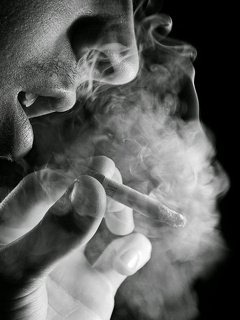 Download Free Mobile Phone Wallpaper Smoker 907 Mobilesmspknet