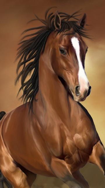 Horse Mobile Phone Wallpaper