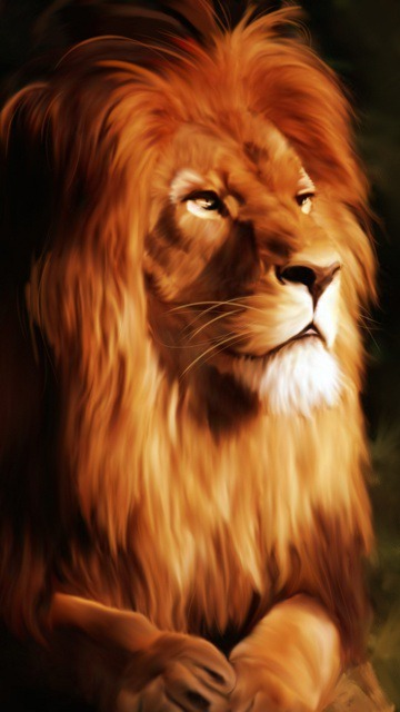 Download Free Mobile Phone Wallpaper Lion 1103