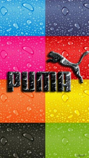 Puma Mobile Phone Wallpaper