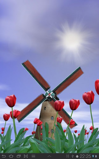Tulip Windmill Android Mobile Phone Wallpaper