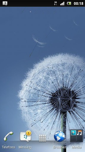 Dandelion Galaxy s3 Android Mobile Phone Wallpaper