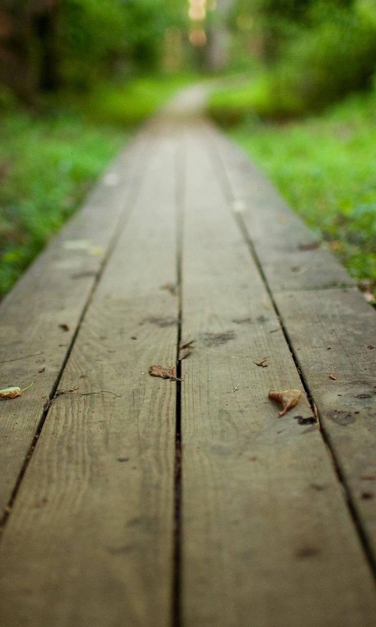 Wood Path  Mobile Phone Wallpaper