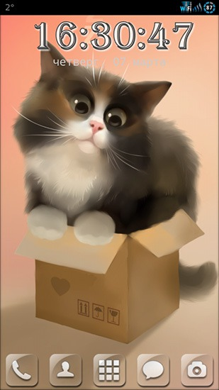 Cat In The Box Android Mobile Phone Wallpaper
