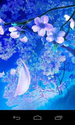 3D Sakura Magic QMobile NOIR A10 Wallpaper