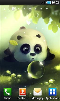 Panda Dumpling QMobile NOIR A10 Wallpaper
