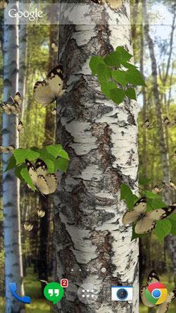 Butterflies 3D QMobile NOIR A10 Wallpaper