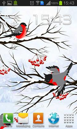 Winter: Bullfinch Android Mobile Phone Wallpaper