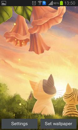 Kitten: Sunset Android Mobile Phone Wallpaper