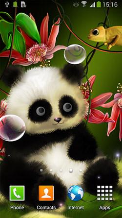 Panda Android Mobile Phone Wallpaper