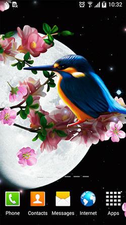 Sakura And Bird Android Mobile Phone Wallpaper