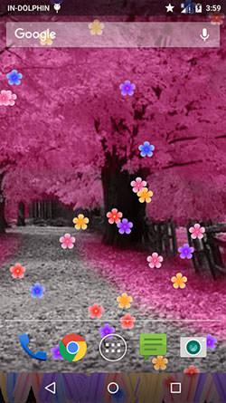 Blossom QMobile NOIR A10 Wallpaper