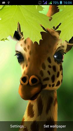Giraffe HD Android Mobile Phone Wallpaper