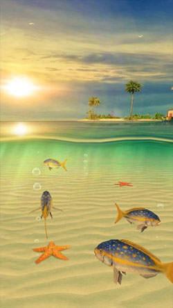 Ocean Aquarium 3D: Turtle Isles Android Mobile Phone Wallpaper