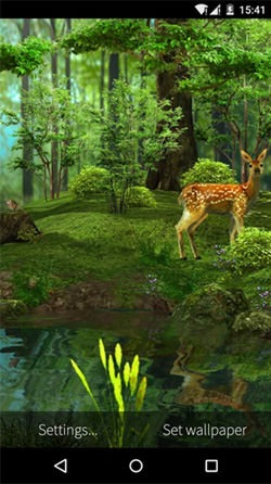Download Free Android Wallpaper Deer And Nature 3d