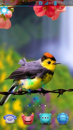 Download Free Android Wallpaper Birds 3d 4039 Mobilesmspk Net