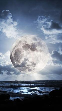 The Moon Paradise