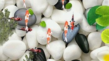 www.mobilesmspk.net koi fish 3d 4210