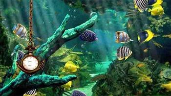Aquarium: Clock Android Mobile Phone Wallpaper