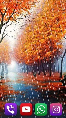 Autumn Rain Android Mobile Phone Wallpaper