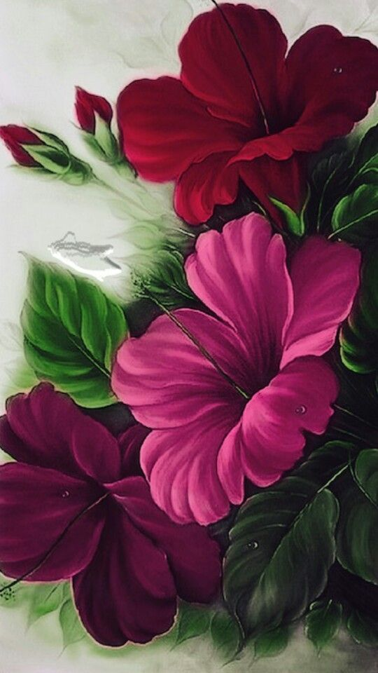 Flowers Android Mobile Phone Wallpaper