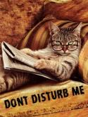 Dont Disturb Me  Mobile Phone Wallpaper
