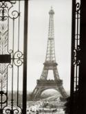 Paris  Mobile Phone Wallpaper