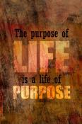 Purpose Of Life  Mobile Phone Wallpaper