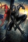 Spiderman  Mobile Phone Wallpaper